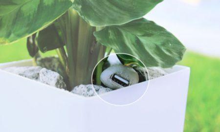 usb-cable-pot-plant-bioo-lite