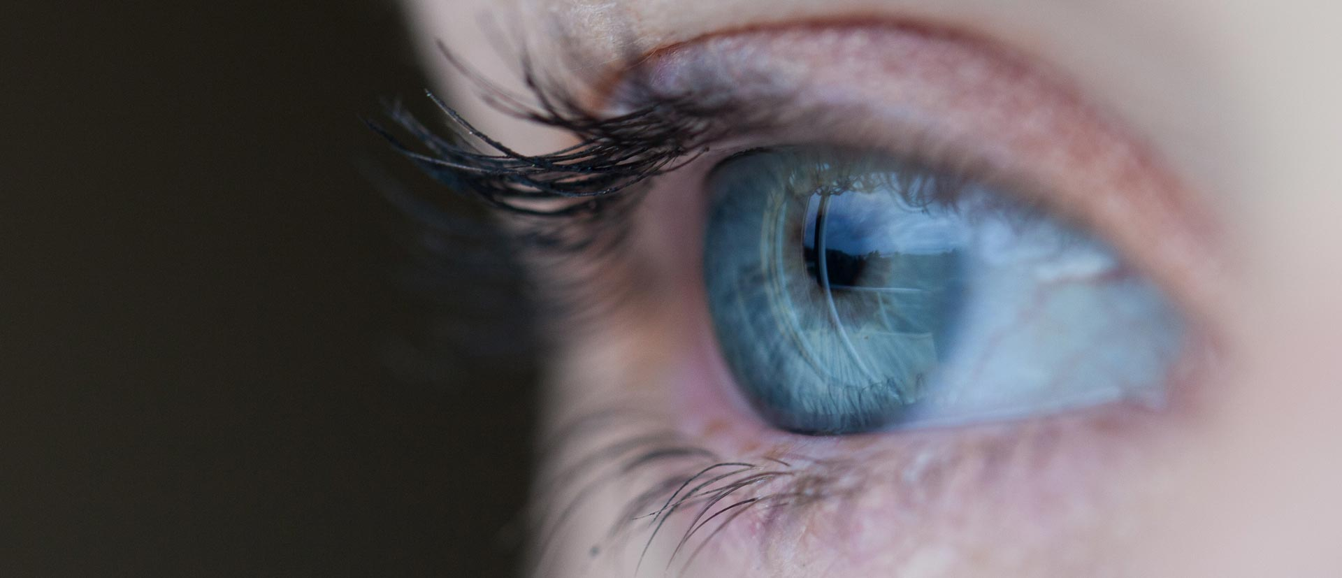 contact-lenses-sony