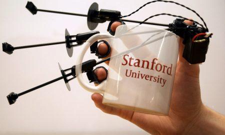Stanford Wolverine