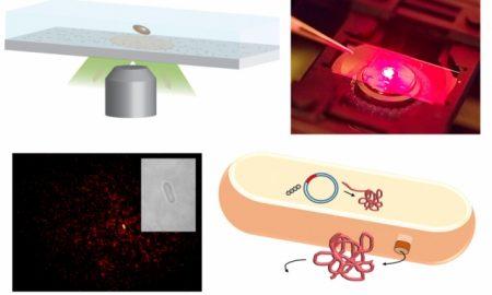 MIT sensors single protein