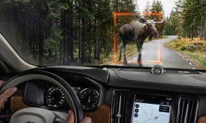 volvo detection system moose