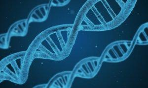 DNA malware computer