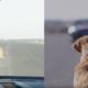 huawei mate 10 pro driverless car mwc 2018