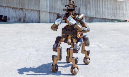 centauro-robot