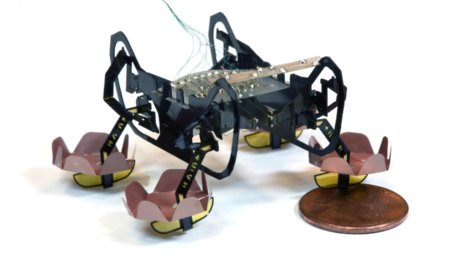 harvard-micro-bot