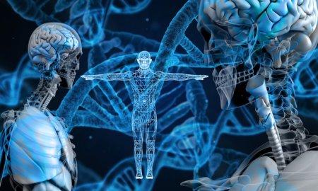 ai-learns-to-dose-cancer-treatments