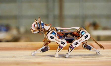 nybble-robot-cat