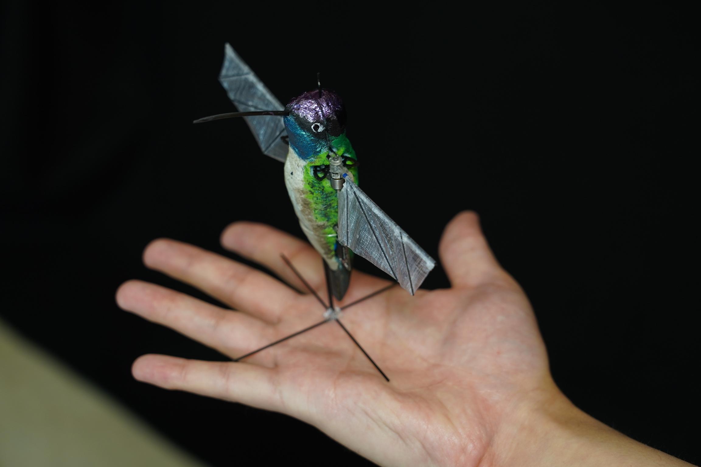 hummingbird-robot-better-than-drones