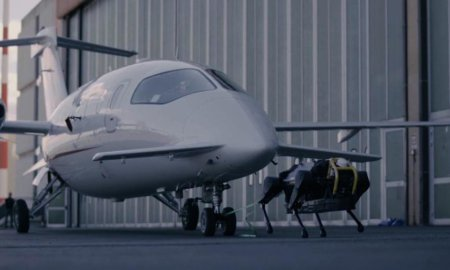 robot dog pulls passenger airplane