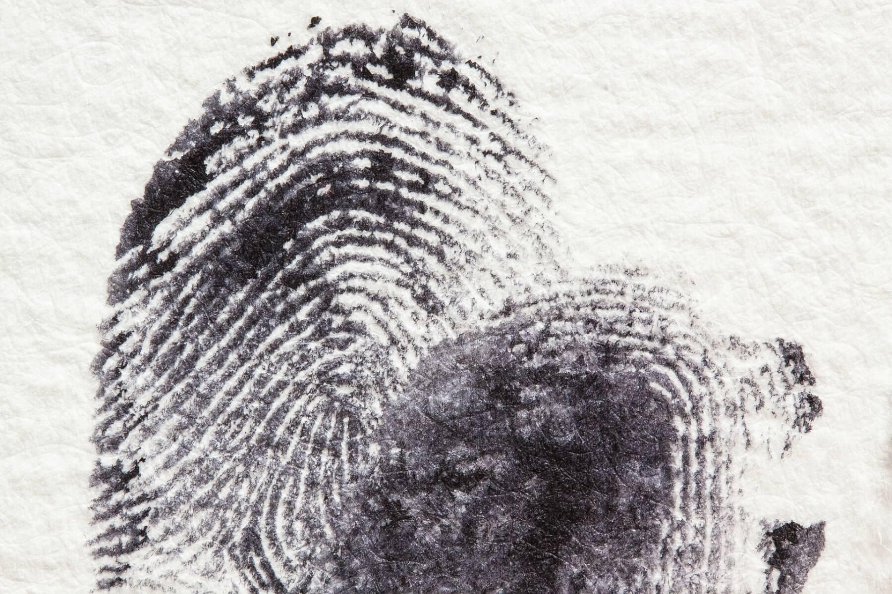 biometric data security flaw