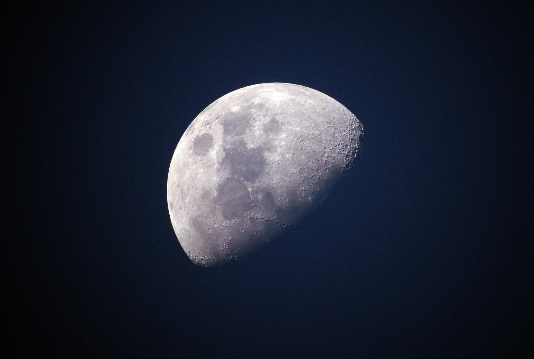 beresheet tardigrade moon