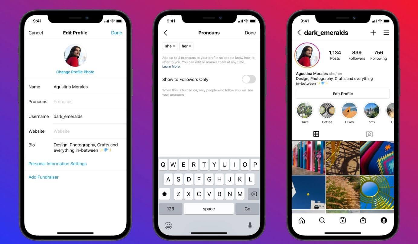 instagram bio pronouns gender option