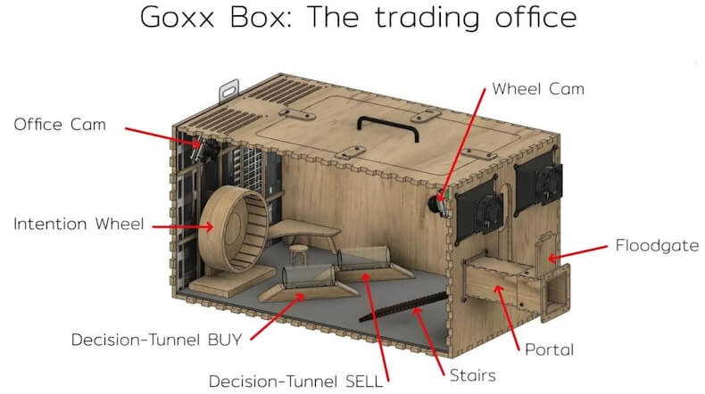 mr goxx office layout for hamster